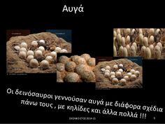 Αυγά Οι δεινόσαυροι γεννούσαν αυγά με διάφορα σχέδια πάνω τους , με κηλίδες και άλλα πολλά !!! 9ΣΧΟΛΙΚΟ ΕΤΟΣ 2014-15