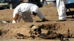 Descubren 47 cráneos en nuevo cementerio clandestino de Veracruz