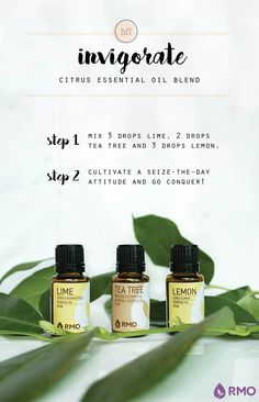 To help lift our energy levels, we offer an invigorating essential oil diffuser blend of Lime, Tea Tree, and Lemon. These essential oils' rejuvenating aromas help us find the motivation to seize the day!