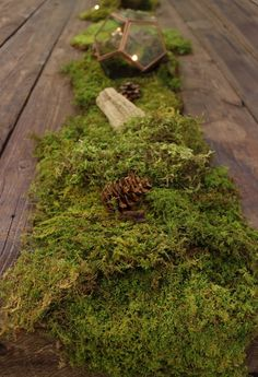 Sheet Moss, Pinecone, and copper-trimmed terrarium DIY table runner