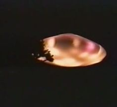 ship of light Aliens And Ufos, Ancient Aliens, Weather Balloon, Unidentified Flying Object, Look At The Moon, Unexplained Mysteries, Alternate History, Flying Saucer, Close Encounters