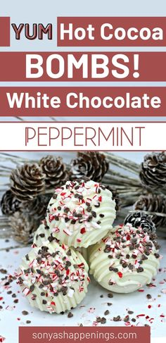 Hot Chocolate Gifts, White Chocolate Recipes, Christmas Hot Chocolate, Cocoa Recipes, Hot Chocolate Bars, Hot Chocolate Mix, Christmas Sweets, Chocolate Desserts, Hot Coco Bar