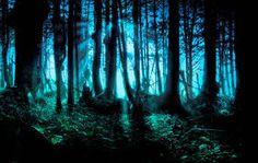 Resultado de imagen de halsey forest-fate and the butterfly