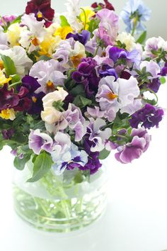 bouquet of pansies Ikebana, Fresh Flowers, Spring Flowers, Beautiful Flowers, Exotic Flowers, Purple Flowers, Sweet Pea Flowers, Spring Bouquet, Deco Floral