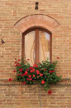 WINDOW IN PIENZA | Flickr - Photo Sharing!