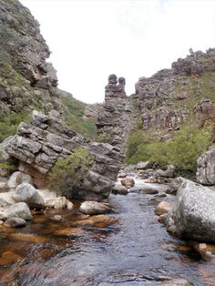 This easy to moderate out-and-back hiking trail is ideal as a winter's day hike. Provinces Of South Africa, River Trail, Over The River, Day Hike, Nature Reserve, Long Weekend, Hiking Trails, Tourism, National Parks