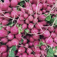 Final in the series of three from today's farmers market is this lovely pile of radishes. There is beauty in the everyday.