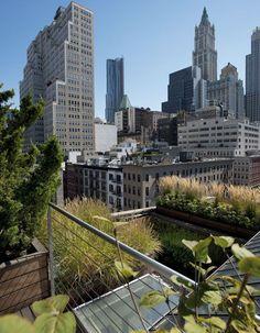 NY rooftop garden