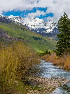 Vail Stream Photograph by Aaron Spong