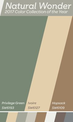Warm up your home with some bold earth tones of Natural Wonder, our 2017 Color Collection of the Year! A color like Privilege Green is a great starting place. Add colors like Ivoire and Hopsack for a balanced combination that really pops. Exterior Paint Colors, Exterior House Colors, Paint Colors For Home, Paint Colours, Kitchen Colour Schemes, Kitchen Colors, Color Schemes, Painting Tips, House Painting