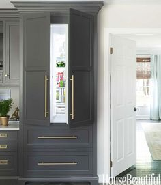 paneled gray refrigerator, sleek gold/brass pulls