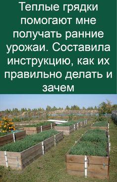 Permaculture, Garden Design, Flora, Home And Garden, Yard, Techno, Backyard Farming, Patio, Plants