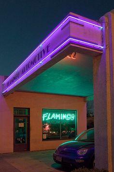 Flamingo Automotive | Texas