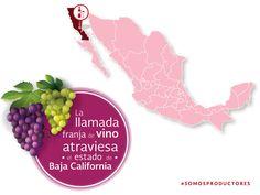 La llamada franja del vino atraviesa el estado de Baja California. SAGARPA SAGARPAMX #SOMOSPRODUCTORES