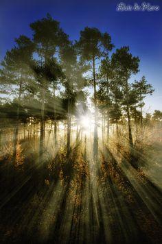 Rays by Lluis  de Haro Sanchez on 500px...Catalonia
