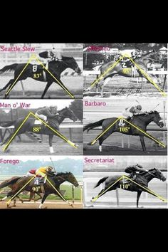 Just look at Secretariat's stride :) (If you can't read the name in the upper right hand corner, it's Affirmed).