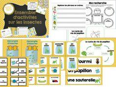 French Insects activities mega pack/Ensemble d'activités de 65 pages sur le thème des insectes!