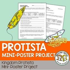 Make mini posters for animal-like, plant-like, and fungus- like protists 7th Grade Science, Science Curriculum, Middle School Science, Biology Lessons, Science Lessons, Life Science, Science Resources, Biology Classroom, Teaching Biology