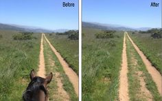 The Vanishing Point Tool quickly and accurately replaced the dirt road.