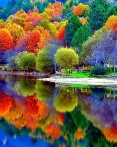 Beautiful Fall Reflections...