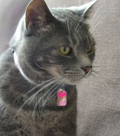 Poppet showing off our most popular tag for last week