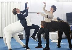 "Changmin and Kyuhyun transform into wooden horses!      To start the year of wooden horse, TVXQ and Super Junior have special gift for you!  A hilarious photo of Changmin and Kyuhyun wearing horse costume has been uploaded through #SuperJunior KYUHYUN."" The best of friends posed as horses lifting their hands like that of horse's front feet. Fans commented, ""So funny! These two are legit dorks!"""