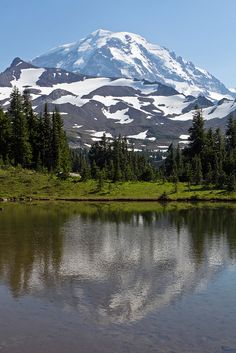 Mt Rainier from the Wonderland Trail