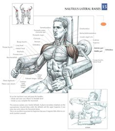 Machine Lateral Raises ~ Repinned by Crossed Irons Fitness