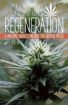 Cannabis Regeneration: A Multiple Harvest Method for Greater Yields by J.B. Haze http://www.amazon.com/dp/1937866041/ref=cm_sw_r_pi_dp_D-vowb0D48WE4