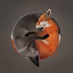 foxes by GaudiBuendia on DeviantArt Wolf Hybrid, Fox Spirit, Spirit Animal Fox, Beautiful Dog Breeds, Fox Drawing, Fox Illustration, Wolf Love, Draw On Photos, The Fox And The Hound
