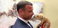 Liev Schreiber Adopts 2 Houston Rescue Puppies On 'Kelly and Ryan' | HuffPost