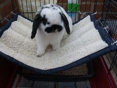 Rabbit Hammock - a cosy pet bed (large) Bunny Cages, Rabbit Cages, House Rabbit, Rabbit Toys, Pet Rabbit, Rabbit Playpen, Bunny Beds, Bunny Room, Baby Bunnies