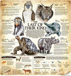 001 Current Endangered Species List How would you use