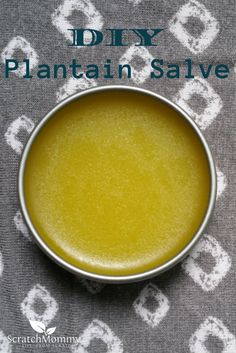 DIY Plantain Salve R