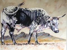 Nguni Bull - Terry Kobus Oil on Canvas 1000x1250mm www.spinman.co.za