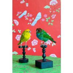 Behang bird branches rood, is een vurig en romantische behang met roze bloemetjes en blauwe vogeltjes op een rode achtergrond en komt uit de behangcollectie van Room Seven, die ontwikkeld is in samenwerking met Coordonné, een Spaans bedrijf dat bekend staat om haar unieke en kwalitatief hoogwaardige behangcollecties.Meer informatie...