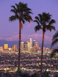 View through palm trees of Los Angeles skyline. This is the Los Angeles skyline , Aesthetic Pastel Wallpaper, Aesthetic Backgrounds, Aesthetic Wallpapers, Bedroom Wall Collage, Photo Wall Collage, City Aesthetic, Aesthetic Collage, Aesthetic Vintage, Los Angeles Skyline