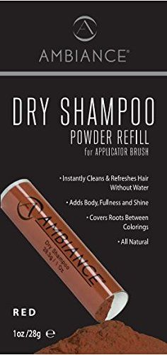 Ambiance Dry Shampoo Refill- Brunette ** Don't get left behind, see this great product : Hair Shampoo Good Dry Shampoo, Natural Dry Shampoo, Hair Shampoo, Brown Hair Shades, Hair Powder, Good Hair Day, Natural Red, Beauty And The Beast, Blog