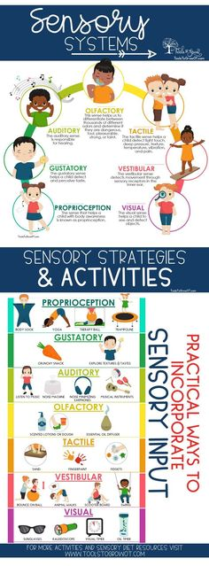 Sensory Diet - Tools to Grow Sensory Diet: Practical Ways to Incorporate Sensory Input for children and students. Includes Discussion of Sensory Systems, Evidence Base Research on Sensory Diets, and free printables to create a Sensory Diet. Sensory Therapy, Sensory Tools, Sensory Diet, Sensory Issues, Diy Sensory Toys, Sensory Swing, Sensory Integration Therapy, Baby Sensory, Play Therapy
