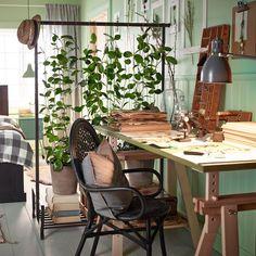 urban jungle  plante verte installée sur un portant à vêtement = paravent végétal - Le blog deco de mlc