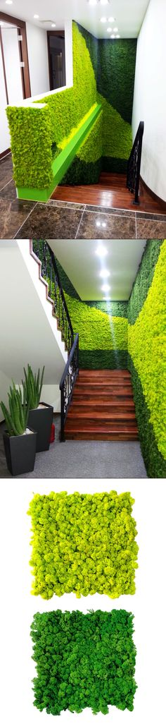 Amazing green walls