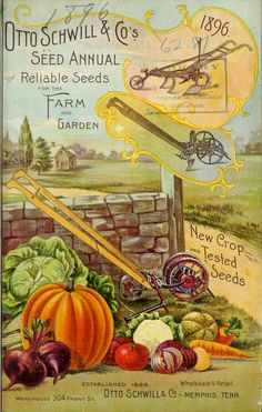 1896 Annual catalogue of Otto Schwill & Co.'s seeds