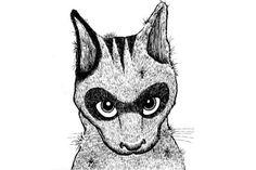 """Kratzen sind die zamonische Spielart der Gemeinen Hauskatze. Im Gegensatz zu Hauskatzen können Kratzen allerdings sprechen. In ihren Gehirnen sind von Geburt an alle zamonischen Sprachen und Dialekte """"gespeichert"""", sämtliche Tiersprachen mit eingeschlossen. Sie haben eine zweite Leber, die zu extrem fettarmem Blut führt, und ein perfektes Gedächtnis."""