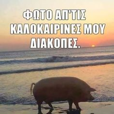 Funny Greek Quotes, Funny Quotes, Are You Serious, Funny Statuses, Happy Animals, Keep In Mind, Funny Cartoons, Laugh Out Loud, The Funny