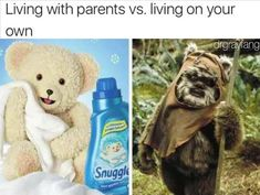 32 Funny Memes And Pictures Of The Day