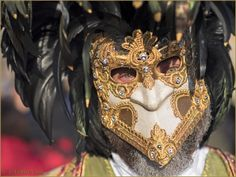 Photos Masques Costumes Carnaval Venise 2015   page 1