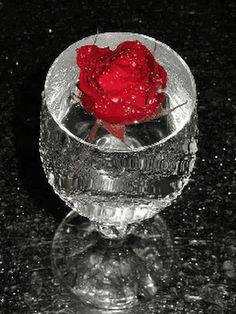 Flowers Gif, Beautiful Rose Flowers, Beautiful Gif, Glitter Flowers, Power Wallpaper, Cellphone Wallpaper, Kool & The Gang, Wine Glass Images, Coeur Gif