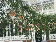 """Fabulous florals from @thefreshflower1 @HornimanMuseum #conservatory today #weddingday #weddingseason #SE23 #LoveLondon #welovelove"""