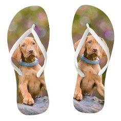 #funny - #Cute puppyeyed Hungarian Vizsla Dog Puppy Photo _- Flip Flops