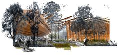 HASSELL | Projects - Perry Park Design Competition